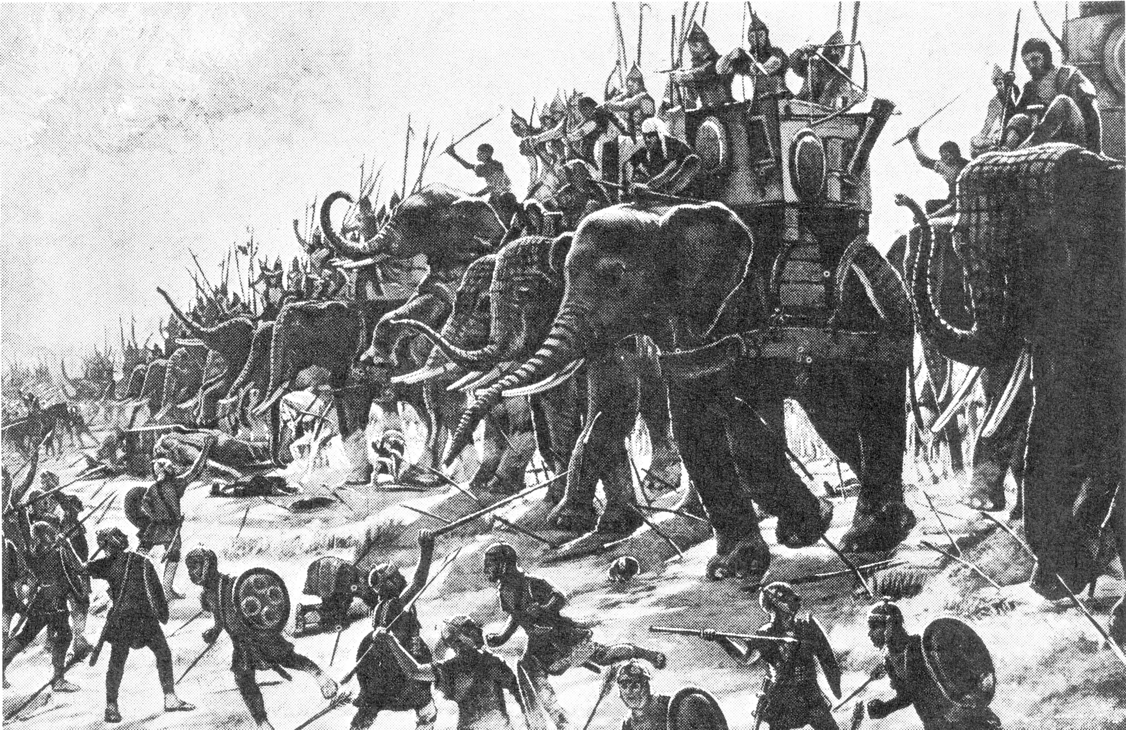 Elefantes Los Tanques De La Antigüedad