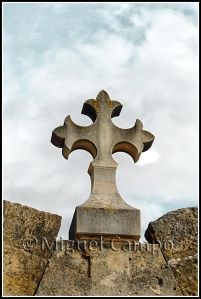 cruz cátara