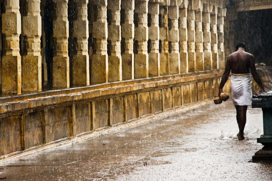 Temple Seva In Rain Thirukadaiyur