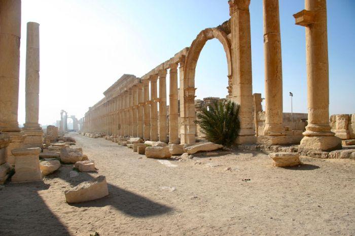 Decumanus Palmira