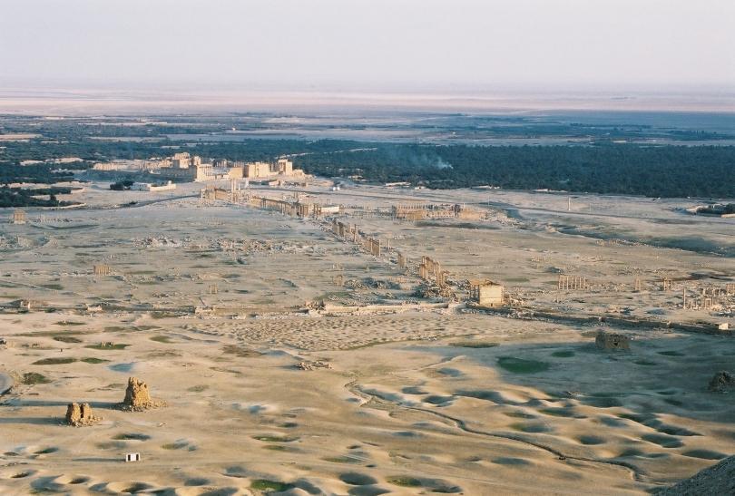 Vista general de Palmira