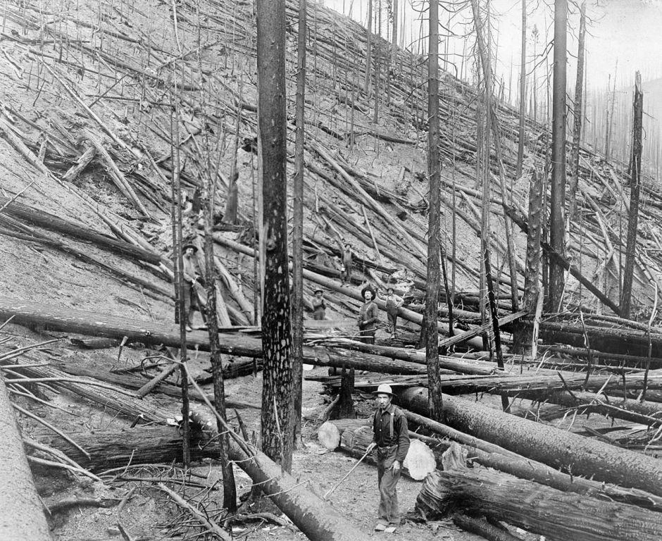 el gran incendio de 1910