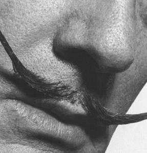 Gros_plan_sur_la_moustache_de_Dali