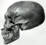 El cráneo de un faraón descubrió en enero de 1907, por Edward Ayrton y Theodore Davis KV 55 (tomb55), ahora situado en Museo de El Cairo, CG61075.