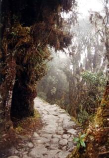 camino real inca