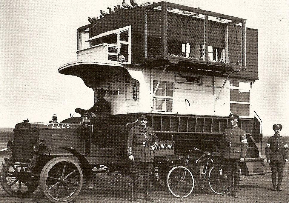 paloma mensajeras primera guerra mundial