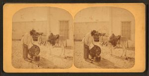 800px-water_carrier_from_robert_n-_dennis_collection_of_stereoscopic_views_2