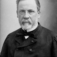 Koch versus Pasteur, una rivalidad muy fructífera
